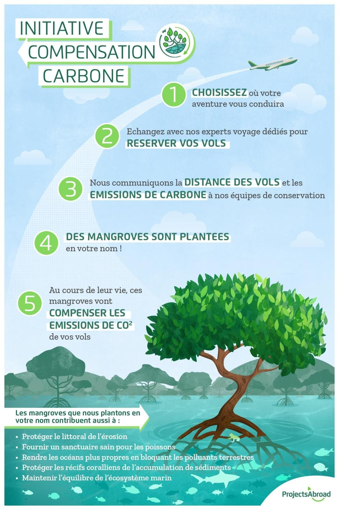 Infographie montrant comment on peut réduire votre empreinte carbone en plantant des mangroves.